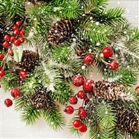 Christmas Woods Fragrance Oil 764
