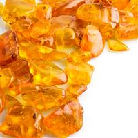 Amber Fragrance Oil 235