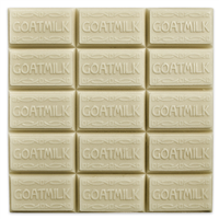 Goat Milk Guest Tray Soap Mold (MW 09)