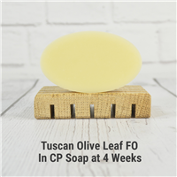 Tuscan Olive Leaf FO in CP Soap