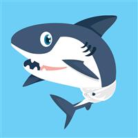 Baby Sharks Fragrance Oil 1063