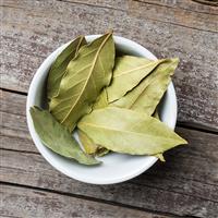 Bay Leaf & Tobacco Fragrance Oil 332